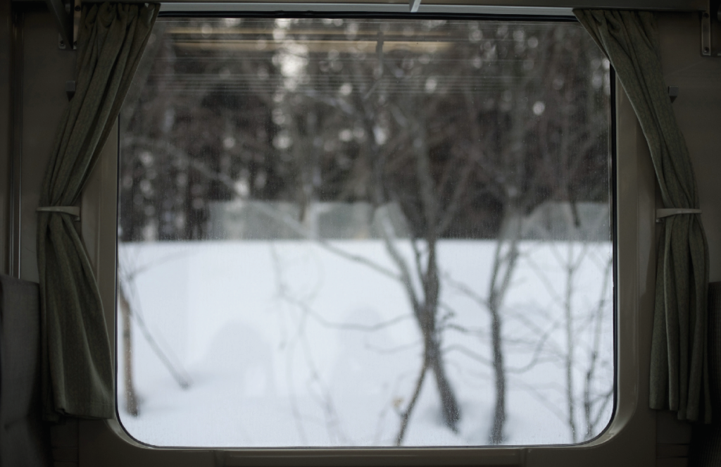 An image of trees in the show as seen from a train window.